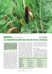 La biodiversit? du bord d'un champ III - Inra