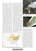 Mai en Amérique du Nord - Page 3
