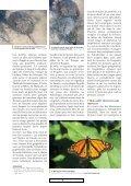 Mai en Amérique du Nord - Page 4
