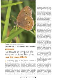 Impact des activités humaines / Insectes n° 143