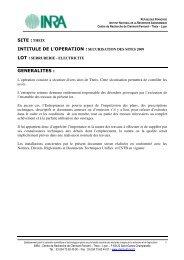 SITE :THEIX INTITULE DE L'OPERATION :SECURISATION DES ...