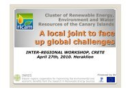 A local joint to face up global challenges Cluster of ... - INRES