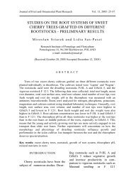 studies on the root systems of sweet cherry trees grafted on different ...