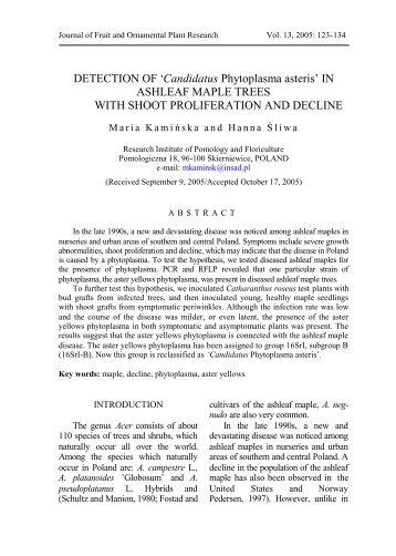 'Candidatus Phytoplasma asteris' IN ASHLEAF MAPLE TREES ...
