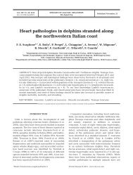 Heart pathologies in dolphins stranded along the northwestern ...