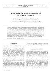 Gracilaria conferta - Inter Research