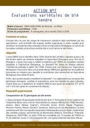 ACTION N°7 Évaluations variétales de blé tendre - Inter Bio Bretagne