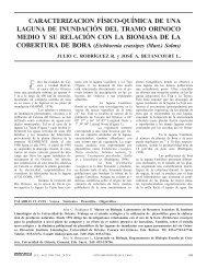 243 RODRÍGUEZ.p65 - Interciencia