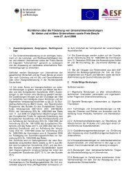 Richtlinien über die Förderung von Unternehmensberatungen für ...