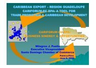 Statement by Mrs. Milagros Puello - Interreg-caraibes.org