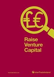 Raise Venture Capital - IntertradeIreland