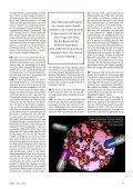 FAIRCONOMY 1/2013 - Initiative für Natürliche Wirtschaftsordnung - Seite 5