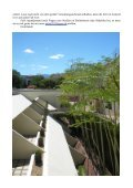 Mein Semester in Stellenbosch - International Office - Universität ... - Seite 4