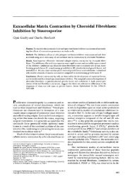 Extracellular Matrix Contraction by Choroidal Fibroblasts: Inhibition ...