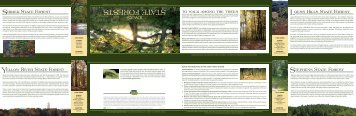 State Forests Brochure - Iowa Department of Natural Resources