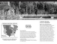 chronic wasting disease - Iowa Department of Natural Resources