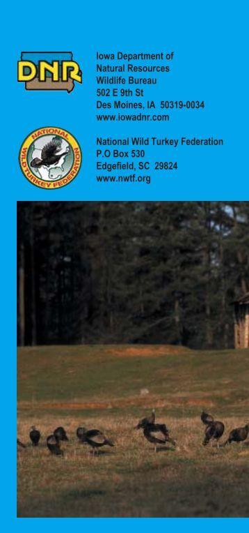 49281 DNR_Turkey Brochure - Iowa Department of Natural Resources