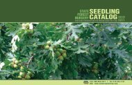 Catalog sEEdling - Iowa Department of Natural Resources