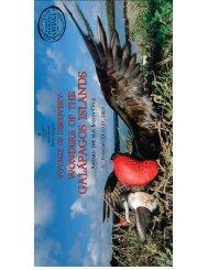 galapagos islands galapagos islands galapagos islands galapagos ...