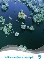 Download 5. fejezet: A Duna-medence országai - Danube Box