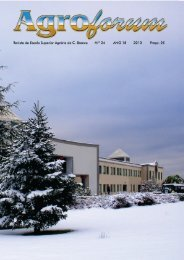 N.º 24 - PDF - Instituto Politécnico de Castelo Branco