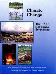 Working Group III: The IPCC Response Strategies