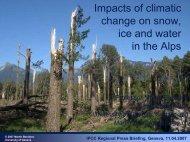 Future climate - IPCC