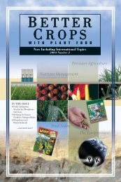 Better Crops 2004 #2 - International Plant Nutrition Institute