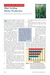 High Yielding Barley Production (Canadian Prairies)