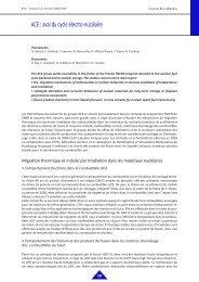 ACE : aval du cycle électro-nucléaire - IPNL