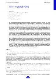 OPERA / T2K : physique de neutrinos - IPNL - IN2P3