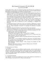 Compte rendu de la journée - IPNL - IN2P3