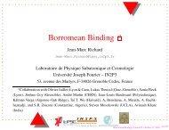 Borromean Binding a - IPNL - IN2P3