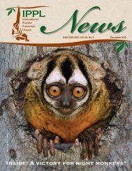A victory for night monkeys! - International Primate Protection League