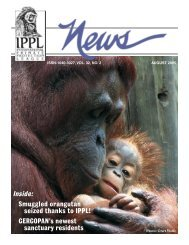 IPPL News Aug05.indd - International Primate Protection League