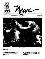 1999: April - International Primate Protection League