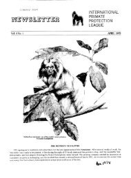 1978: April - International Primate Protection League