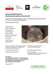 Schwachstellenbericht Siedewasserreaktoren Baulinie 69