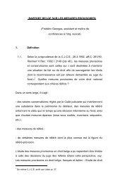 RAPPORT BELGE SUR LES MESURES PROVISOIRES. (Frédéric ...