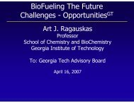 BioFueling The Future Challenges - Institute of Paper Science and ...