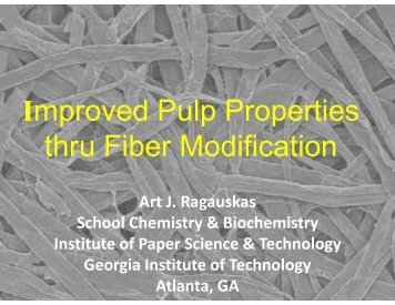Improved Pulp Properties Through Fiber Modification - Institute of ...