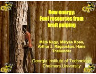 New energy: Fuel resources from kraft pulping - Institute of Paper ...