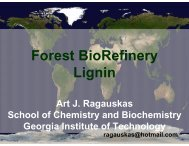 Lignin - Institute of Paper Science and Technology - Georgia ...