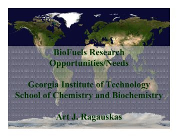 BioFuels Research Opportunities/Needs - Institute of Paper Science ...