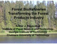 CIBER The Sustainable Forest BioRefinery - Institute of Paper ...