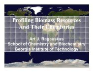 Profiling Biomass Resources and Chemistries - Georgia Institute of ...