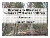 Optimizing the Bleaching of Georgia's SW Thinning Kraft Pulp ...