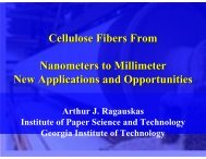 CIBER Sustainable Modified Cellulosics: Micron to Nano