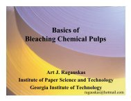 Basics of Bleaching Chemical Pulps - Institute of Paper Science and ...