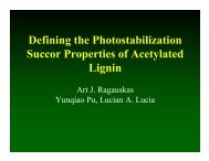 Defining the Photostabilization Succor Properties of Acetylated Lignin